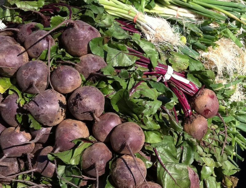 Grand Army beets