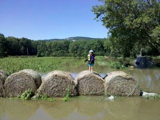Bales in water